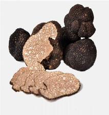 Fresh black truffles Extra quality 100 g Tuber Aestivum Vitt
