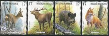 Belgium**FOX-RED DEER-WILD BOAR-ROE DEER-4vals-1998- Ardennes Wildlife-animals