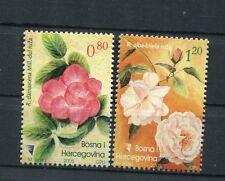 Bosnia Erzegovina Indip 2005 serie  flora  MNH