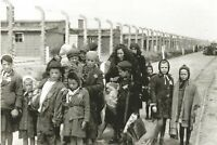 WW II  German  Photo  **  ...Concentration Camp .**