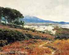 California Coast Trees Sand Shore Art  - Carmel Dunes by Guy Rose 8x10 Print 333