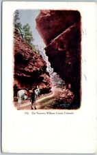"Colorado Springs CO Embossed Postcard ""The Narrows, Williams Canon"" Horse 1908"