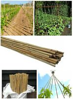 7ft Heavy Duty Bamboo Canes Plant Vegetables Support Professional Garden Cane