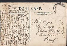Genealogy Postcard - Family History - Payne - Banstead - Surrey  BH1819