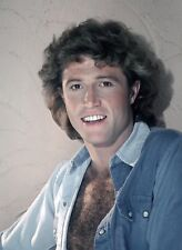 CELEBRITY PORTRAITS - PHOTO #225 - ANDY GIBB