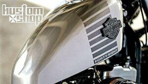 Sportster tank, Harley Davidson, 48, fuel tank, gas tank, peanut....