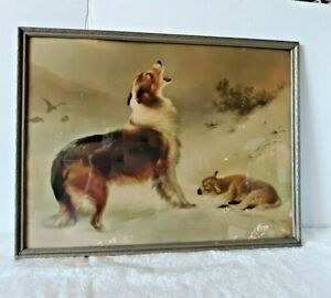"""Found"" Print Collie Guarding Lamb Vintage Albrecht Schenck Framed"