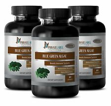 Antioxidant anti aging - ORGANIC BLUE GREEN ALGAE 500mg - weight loss detox - 3B