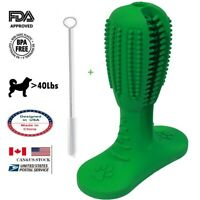 US Stock-Large Dog>40LBS Toothbrush Chew Toy Oral Brush Stick Natural Rubber FDA