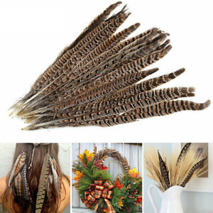 20 Pack Natural Pheasant Tail  Feathers  8-12 Inch Long DIY Craft Party Decor