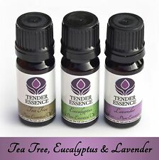 3 Essential Oils of Tea Tree, Lavender & Eucalyptus. For home first aid kit set.