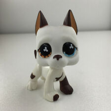 Puppy Girl Gift #577Brown & White GREAT DANE DOG Flower Eyes Littlest Pet Shop