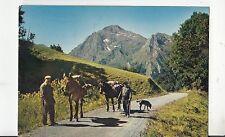 BF21191 sur un chemin les  pyrenees le pic d estos  france front/back image