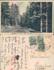 VALLOMBROSA m. 100 -  STRADA PER SALTINO E VIA S. AGATA        (rif.fg.10439)