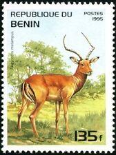 REPUBLIC OF BENIN - 1995 - Wild Animal - Impala (Aepyceros melampus) - #777