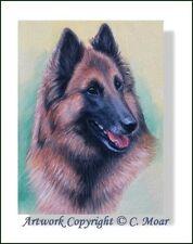 Belgian Shepherd Red Tervuren Dog Head Study OE Art Print CMOAR Berger Belge