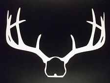 Deer Antler White Vinyl Decal for Hunters