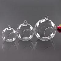 Ball Bauble Hanging Glass Tea Light Candle Holder Microlandscape Bottle Vase