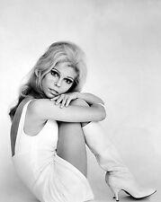 "Nancy Sinatra 10"" x 8"" Photograph no 7"