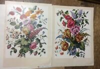 Vintage Woman's Day Flower Prints Set in Envelope 1953 Recounted