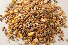 20KG Pigeon Seed Food 4 Season Pigeon Corn - Bird Feed