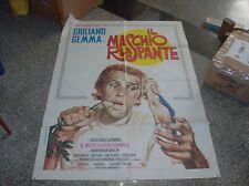 IL MASCHIO RUSPANTE manifesto 2F originale 1972