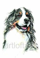 BERNESE MOUNTAIN  DOG ART  ACEO Card Print by A Borcuk