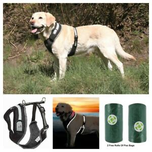 Dog Harness Reflective FLASHING Black, Choice Of Size - 2 Free Dog Poo Bag Rolls