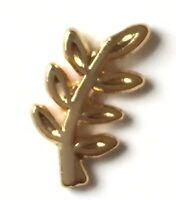 Francmasón Evergreen Ramita de Acacia con Escudo Pequeño Pin de Solapa