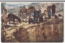 Palestine; Bedouins Drawing Water PPC, Unposted, By Photochrom Celesque