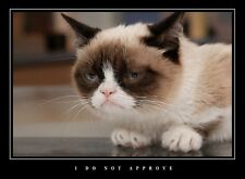 LARGE FUNNY DEMOTIVATIONAL GRUMPY CAT LARGE WALL ART PHOTO PRINT PREMIUM POSTER