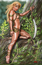 Elven Warrior sexy elf warcraft fantasy comics 11x17 signed print Dan DeMille