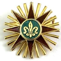 VINTAGE FLEUR DE LIS BROOCH PIN ENAMEL HERALDIC GOLD TONE METAL