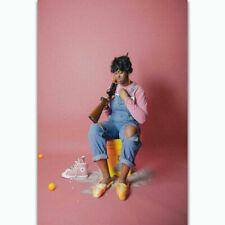 100C2 Tierra Whack Rapper Music Singer Deco Print Art Silk Poster