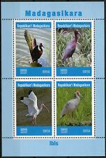 Madagascar 2019 MNH Ibis 4v M/S Water Birds Stamps