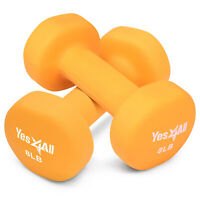 Yes4All 8 lb Neoprene Dumbbell Weight Set for Full Body Workout