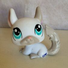 Littlest Pet Shop #1401 White & Gray CHINCHILLA with Blue and Teal Eyes LPS