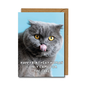 FUNNY Birthday CAT Card Isolation for Dad Mum Friend Sister CAKE