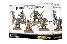Warhammer Nurgle Rotbringers Putrid Blightkings Games Workshop