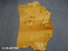 Smoked Moosehide Piece: Gallery Item  (2-10-GP79CEW)