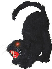 HALLOWEEN  BLACK CAT SOUNDS HAUNTED HOUSE  PROP DECORATION