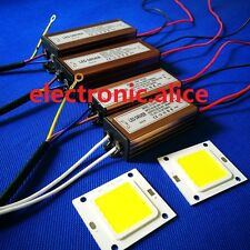 HOT veri watt chip-on-board HIGH POWER 20W 30W 50W 220V 110V Lampada a LED lampada Chip integrato