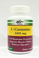 500 MG x 100 CAPSULES, L-CARNOSINE, MUSCLE VITALITY, ANTIOXIDANT