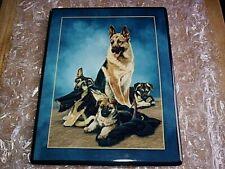 Bradford Exchange German Shepherd Plate The Rookies B1548 by Linda Picken