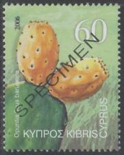 Specimen, Cyprus Sc1058 Fruit, Cactus