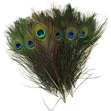 10× Natural Peacock Tail Feather Crafts Clothing Home Floral Decor DIY Supplies
