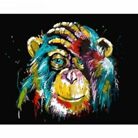 Paint By Numbers - DIY acrylic Painting Picture Art - Colourful Monkey