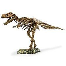 Science T-Rex Skeleton Model Toy Teacher Gift Idea Jurassic Park Dinosaur