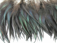 "100+ NATURAL BLACK BRONZE SADDLE ROOSTER CRAFT FEATHER 6""-7""L"