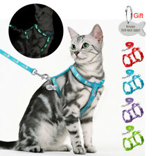 Reflective Cat Harness & Walking Leash Panda Printed Set Kitten Engraved ID Tags